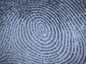 Сколько стоит пройти отпечатки пальцев для охраны